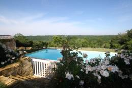 La fourtonie Dordogne Périgord pisicne